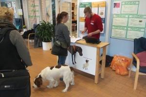 38 hunde var til eksamen_(2)