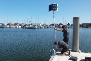 Stiger med lys - Sikker Havn(3)