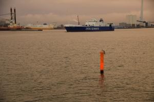 Skibe i Esbjerg Havn