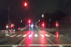 Regnvåd vej