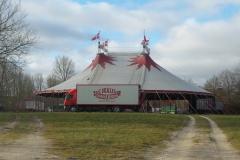 Konkursramt cirkus rejser sig i Odense_
