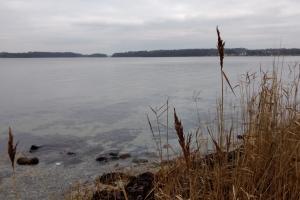 Skrillinge Strand ved Middelfart