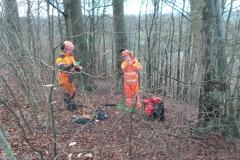 Sprænger træer med dynamit(2)