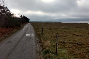 Enebærodde ved Odense Fjord.