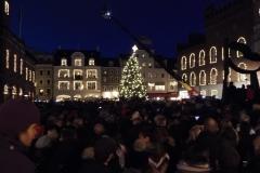 Juletræet tændes på Flakhaven6