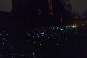 Den engelske kunstner Bruce Munros lys-installation i Eventyrhaven