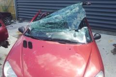 13-årig død_ Påvirket bilist kørte over for rødt_(2)