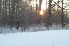 Solopgang i sne(1)