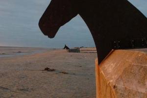 Trojanske heste i Blåvand(2)