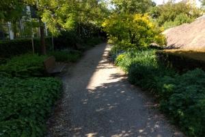5. maj 2018: Sidste kik ind i Lotzes Have. Haven blev anlagt imellem 1853 og 1855, efter at Gustav Lotze i 1852 havde købt Løveapoteket, som lå i Overgade.