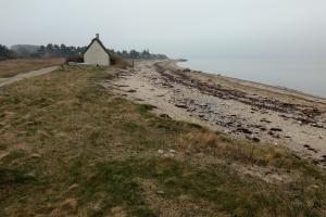 14. april 2018: Jord forurenet med tjære ved Stenene ved Langø. Foto: Ole Holbech