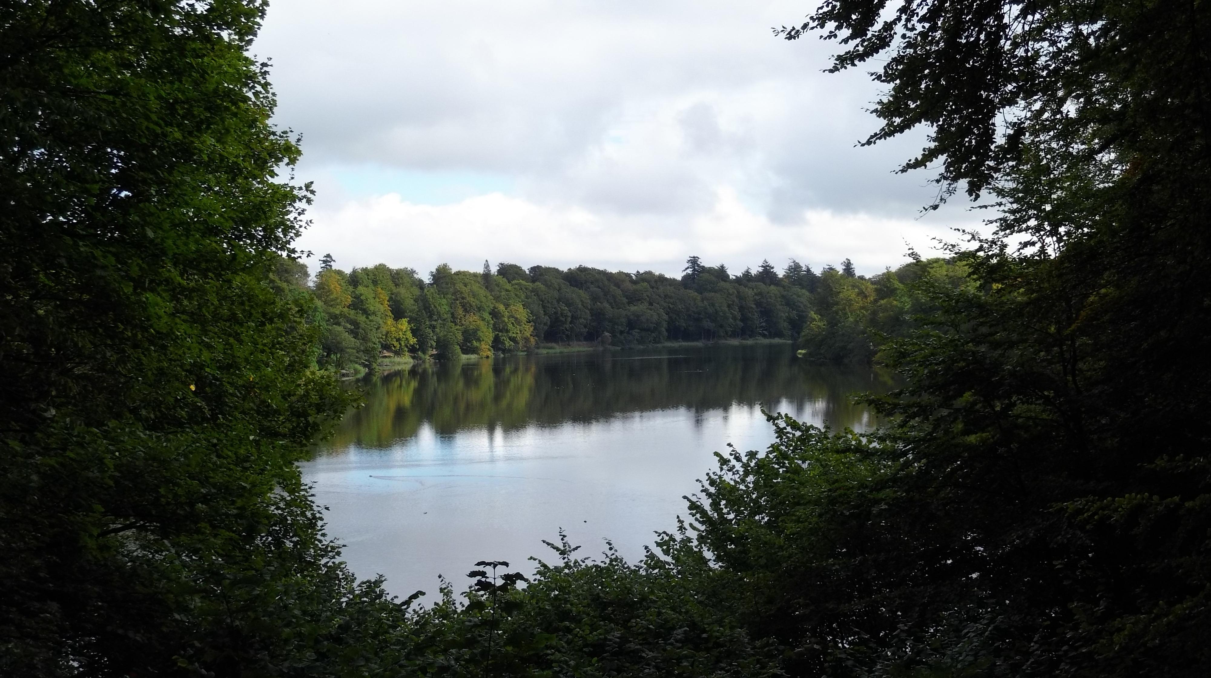 Langesø