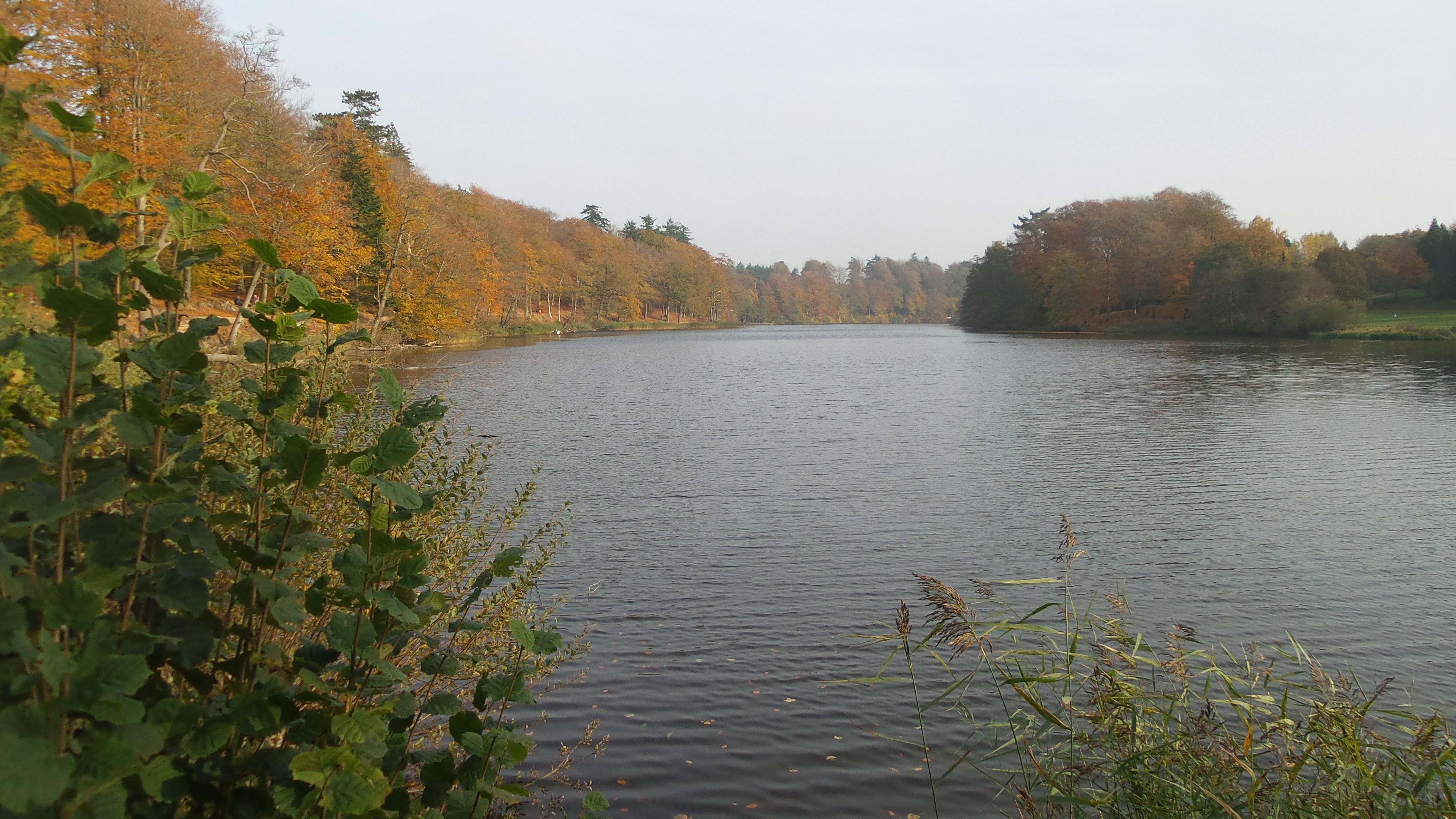Langesø(1)