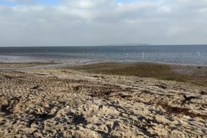Nørrebyy Strand, Nordfyn