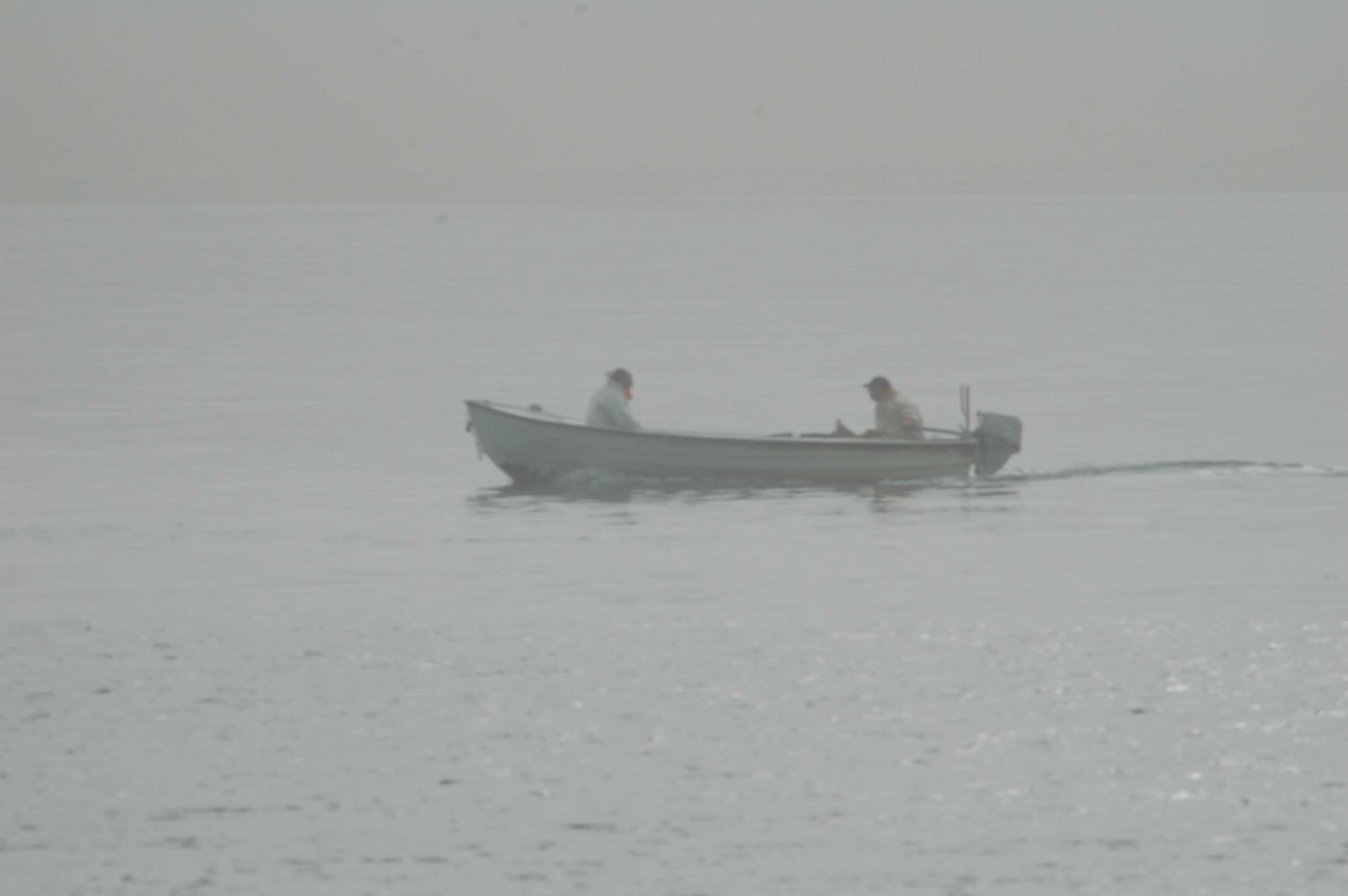 Tåge ved Fyns Hoved